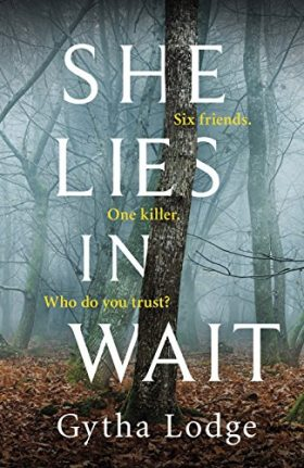 She Lies in Wait, Gytha Lodge, review