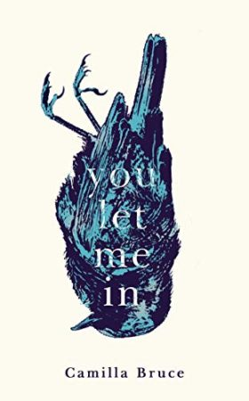 You Let Me In, camilla bruce, review