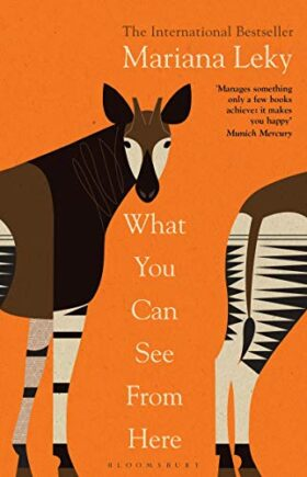 What You Can See From Here, Mariana Leky, review